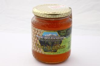 Miele Italiano di Fiori di Bosco Bio del Trentino