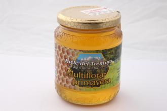 Miele Italiano Multiflora Primavera  Bio del Trentino